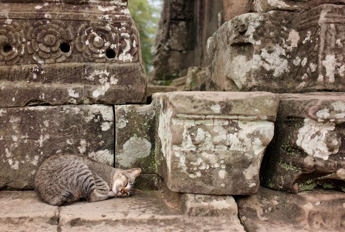 Что взять с собой? Экскурсия в Камбоджу