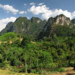 Дикая природа, джунгли, животные Тайланда