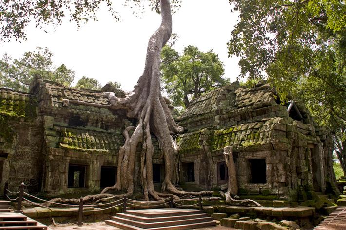 Древний город Ангкор, храм Та Пром
