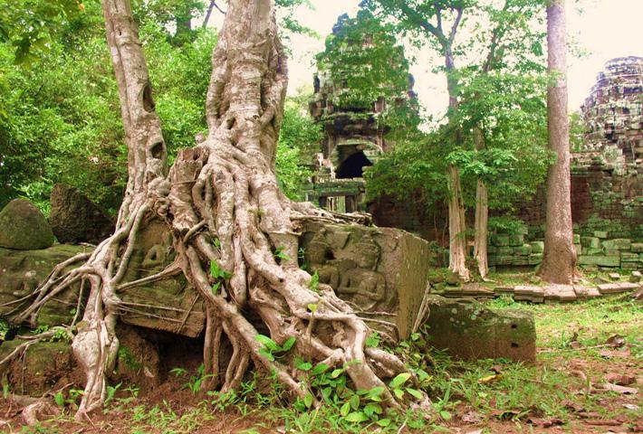 Экскурсия в Камбоджу - Ангкор
