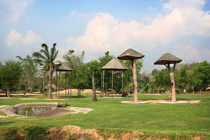 Экскурсия в открытый зоопарк Кхао Кхео в Таиланде, Паттайя