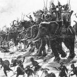 Слон — священное животное и символ Тайланда