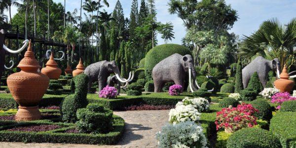 Тропический парк сад Нонг Нуч — Слоны
