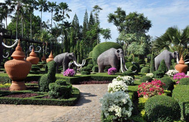 Тропический парк сад Нонг Нуч - Слоны